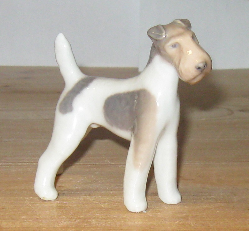 Ruhåret Fox Terrier